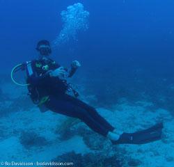 BD-060412-Moalboal--Homo-sapiens.-Linnaeus.-1758-[Diver].jpg